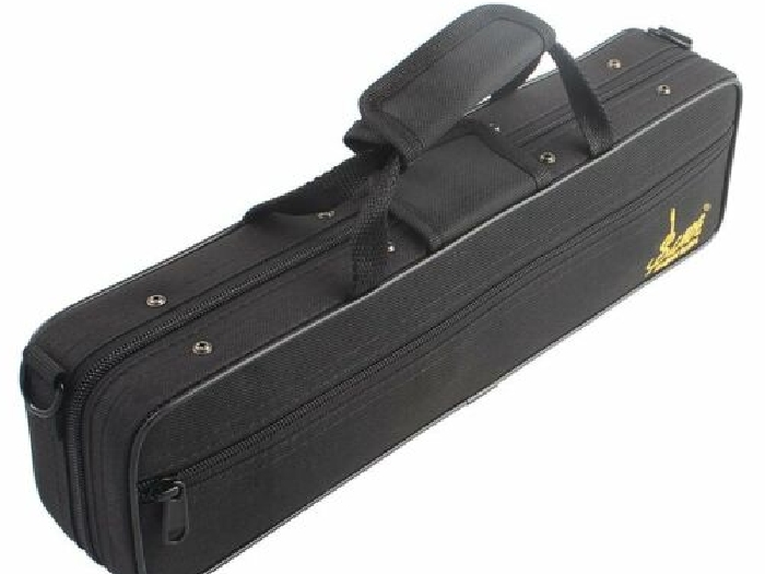 Flute Case Gig Bag Backpack Box Water-resistant 600D Foam Cotton Padding St DY