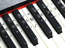 Autocollants Stickers  Touches Clavier de Piano Lire Notes musique